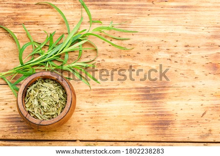 Tarragon or estragon.Artemisia dracunculus.Fresh and dry tarragon herb on wooden table.Space for text #1802238283