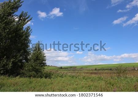 british outdoors english countryside rural england yorkshire fields and agriculture summer day nature #1802371546