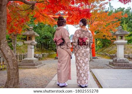 Japanese girls in kimono walking in the Park of Nara. Two Japanese women in national costumes. Women under the red Japanese maple. Nature Park in Nara. Geishas. Sights Of Japan. Autumn walk in Nara.
