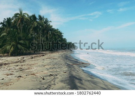View of Palomino Beach in Colombia      #1802762440