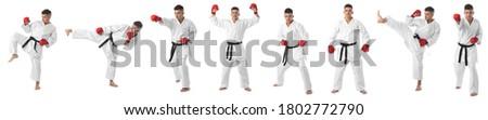 Taekwondo, judo, karate athlete. Set of full length portraits of man in white kimono black belt and red gloves isolated on white background. Royalty-Free Stock Photo #1802772790