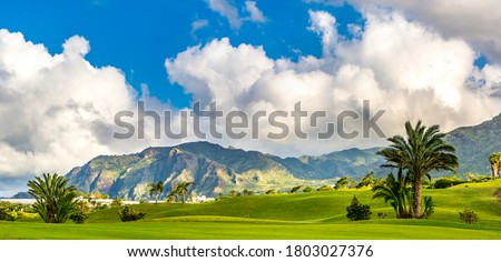 Amazing view of green lawn of a golf course with palm trees, mountains on the background. Location: Buenavista del Norte, Tenerife, Canary Islands. Artistic picture. Beauty world. Panorama