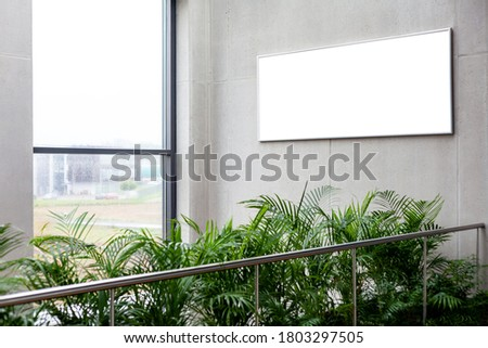 Business corporate green area with an empty white sign / advertisement frame on a concrete wall near a window indoors. Advertisement area, place for a poster, copy space, corridor with plants