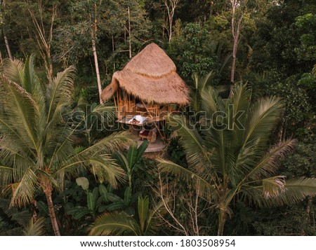 Aerial view from drone happy travel couple on hammock balcony of bamboo tree house with jungle nature view. Vacation in beaitiful hidden place, honeymoon on Bali island #1803508954