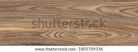 wood texture background with high resolution, natural wooden, plywood texture with natural wood pattern, walnut wood surface with top view, oak texture with beautiful wooden grain, Walnut bark wood. #1803709336