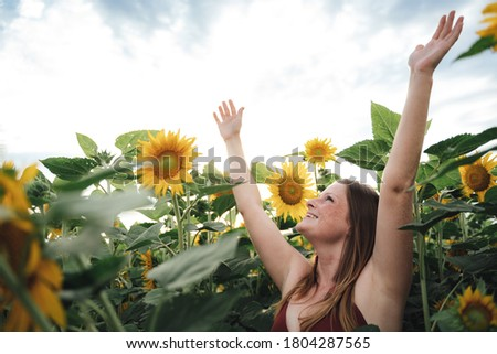 Carefree Caucasian young woman smiling with arms raised in sunflower field during spring season. High quality photo