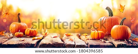 Pumpkins On Aged Plank At Sunset - Autumn And Harvest Concept