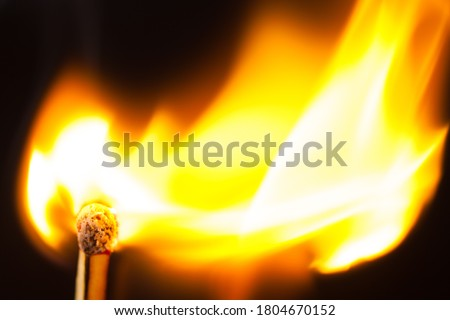 Attention, dangerously ignite a match in the woods, lawn large fire flame black background Royalty-Free Stock Photo #1804670152