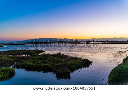 Sunset over the bay. Wetlands relaxing background. Amazing colorful landscape of Ebro Delta, Spain. Vacations adventures. Grass, lagoons and birds. Unique fauna in the world.