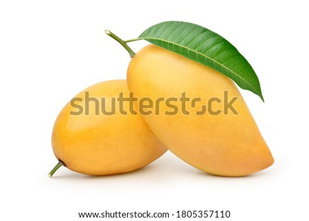 Ripe Mango with green leaf isolated on white background. Clipping path. Royalty-Free Stock Photo #1805357110