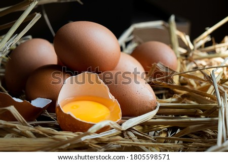 Fresh farm eggs on hays in dark local barn. Eggs were freshly hatch by farm chicken. Farm eggs is organic & rich in protein. Egg yolk has yellow color. Eggs on hay and poultry product concept.  #1805598571