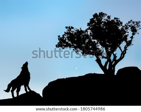 His picture of the wolf sacrifice is notabful on the mountains next to the tree