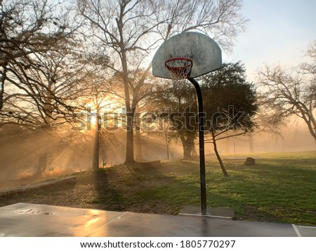 Basketball hoop in a park with sunset in the background.