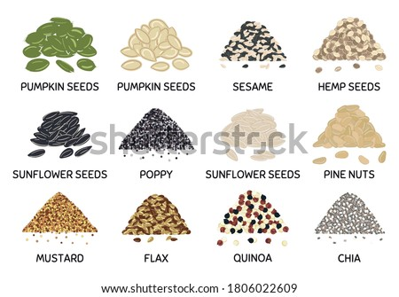 Set of hand drawn vector handful of seeds. Pumpkin and sunflower seeds, chia, poppy, flax, quinoa, mustard, hemp, pine nuts. Organic healthy food. Vegan and vegetarian poster Royalty-Free Stock Photo #1806022609