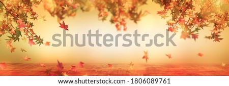 beautiful abstract autumn leaves background with wooden table in sunshine, fall leaf in idyllic autumnal scene with advertising space, oktoberfest beer garden background in nature