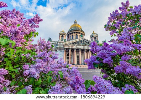 Saint Petersburg visit card. Russia. St. Isaac Cathedral on the background of blooming lilac. Summer in Saint Petersburg. Sights Of Saint Petersburg. Cities of Russia. #1806894229