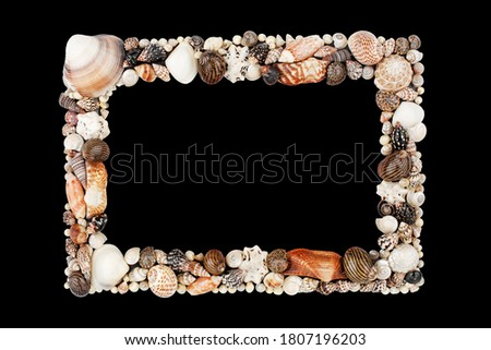 Seashells pattern empty frame on black background isolated close up, blank sea shells border, summer beach holidays concept, tropical ocean island vacation backdrop, tourist travel banner, copy space