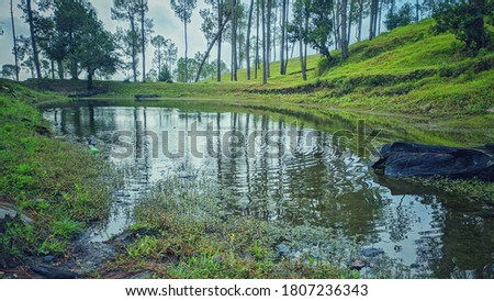 uttarakhand,india-2 june 2020:view of a pond.this is a picture of a pond in forest.this was created with rain water.the pond is surrounded by trees and greenery.pond wallpaper.