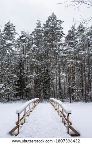 Haukkalampi pond view in winter, snowy trees and wooden bridge, Nuuksio National Park, Espoo, Finland Royalty-Free Stock Photo #1807396432