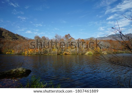 Beautiful colored trees with lake in autumn, landscape photography. Outdoor and nature in Japan