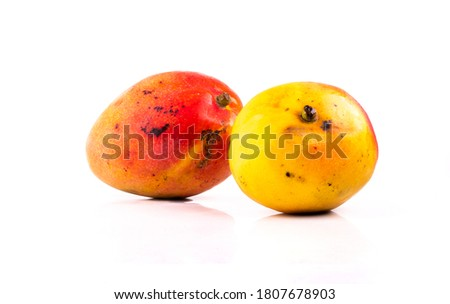 two mangoes isolated in white background in studio