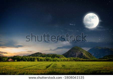 The moon and the stars on the prairie,Background picture