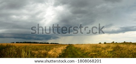 Summer cloudy panoramic landscape with rural road passing through meadows and fields.Ominous clouds in overcast sky over the ripe wheat agricultural fields.Heavy rain and thunderstorm coming. Royalty-Free Stock Photo #1808068201