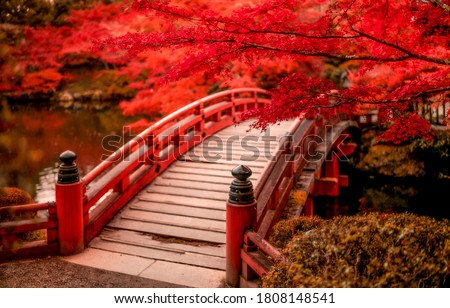 Red autumn park bridge. Wooden bridge in autumn park. Red autumn scene #1808148541