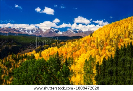 Autumn forest trees in mountains. Autumn mountain forest landscape. Golden autumn forest trees in mountains. Mountain forest in autumn #1808472028