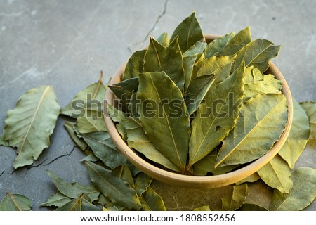 Bay leaves in a clay dish on a concrete worktop Royalty-Free Stock Photo #1808552656