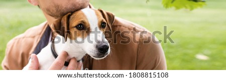 partial view of man holding white jack russell terrier dog with brown spots on head, panoramic concept Royalty-Free Stock Photo #1808815108