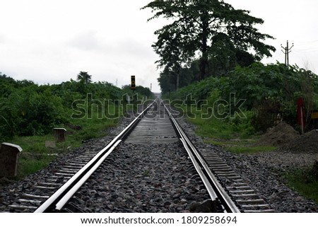 Picture of Railway track and trees