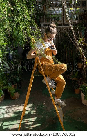 Smiling woman gardener in orange overalls sitting on stepladder, resting, takes a photo of houseplant twig on smartphone. Love for plants, hobby, indoor gardening #1809760852