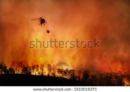 Fire fighting helicopter carry water bucket to extinguish the forest fire #1810018291