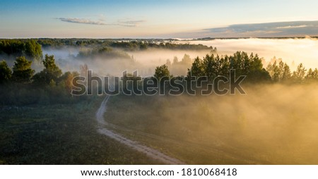 Early morning landscape. Foggy forest. Footpath trough the forest in a thick mysterious fog at sunrise. View from above Royalty-Free Stock Photo #1810068418