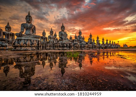 Many Statue buddha image at sunset in southen of Thailand Royalty-Free Stock Photo #1810244959
