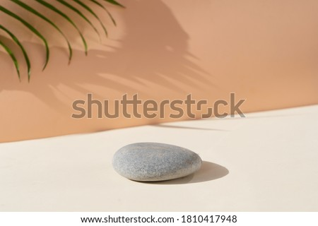 Minimal modern product display on textured beige background with shadows overlay Royalty-Free Stock Photo #1810417948