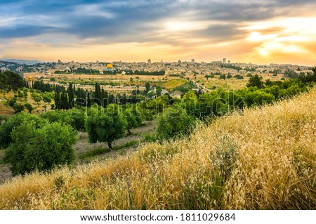 Beautiful sunset clouds over the Old City Jerusalem with Dome of the Rock, the Golden/Mercy Gate and St. Stephen's/Lions Gate; view from the Mount of Olives with olive trees and dry grassy hill #1811029684