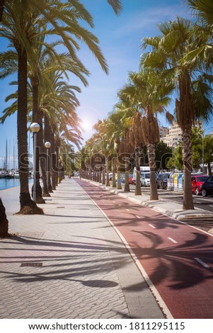 promenade at the harbor of Palma de Mallorca, Spain Royalty-Free Stock Photo #1811295115