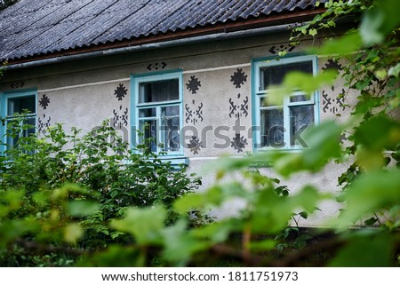 Close-up picture of green grapes leaves and branches covered with water drops during thunderstorm with village house on background.