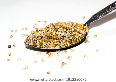A picture of Pearl millet with selective focus