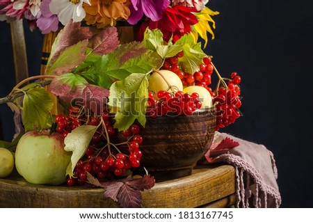 Autumn still life with apples, viburnum berries, autumn leaves on a vintage chair on a black background
