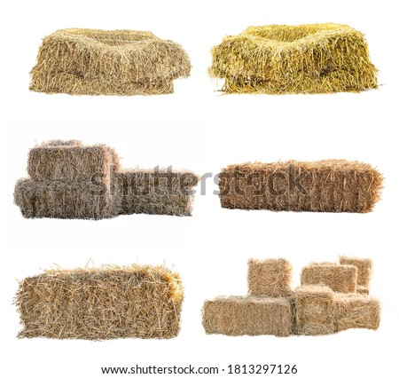 Golden yellow haystack isolated on a white background hay is a tightly joined bale of straw. Royalty-Free Stock Photo #1813297126