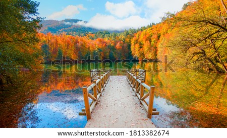 Autumn forest landscape reflection on the water with wooden pier - Autumn landscape in (seven lakes) Yedigoller Park Bolu, Turkey Royalty-Free Stock Photo #1813382674
