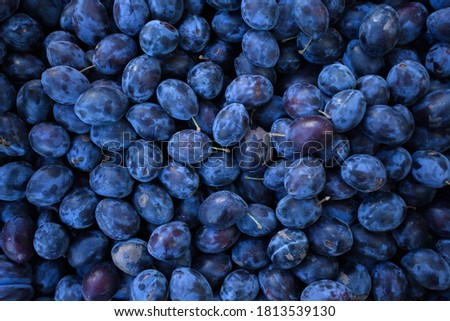 Fresh ripe plum on the open-air market. Background from plums. High quality photo