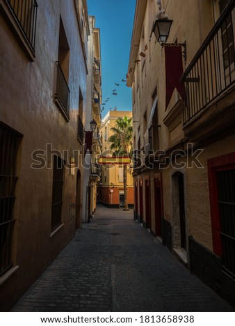 Spanish flags decorating a narrow street in the city of Cadiz in Andalusia in the south of Spain #1813658938