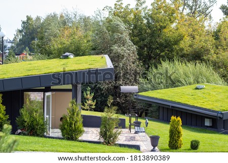 Modern buildings with lawns on the roof in the city eco park, roofs are covered with green grass. Royalty-Free Stock Photo #1813890389