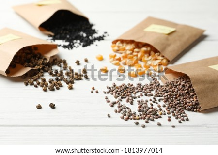 Different vegetable seeds on white wooden table Royalty-Free Stock Photo #1813977014
