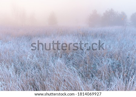 November frosty morning. Beautiful autumn misty sunrise landscape. Foggy morning and rime at scenic high grass meadow. Royalty-Free Stock Photo #1814069927