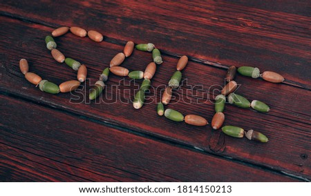 Sale inscription made of autumn acorns on a mahogany background. Discounts and sales, lettering on a wooden background. Advertising picture for seasonal discounts, creative concept for stores